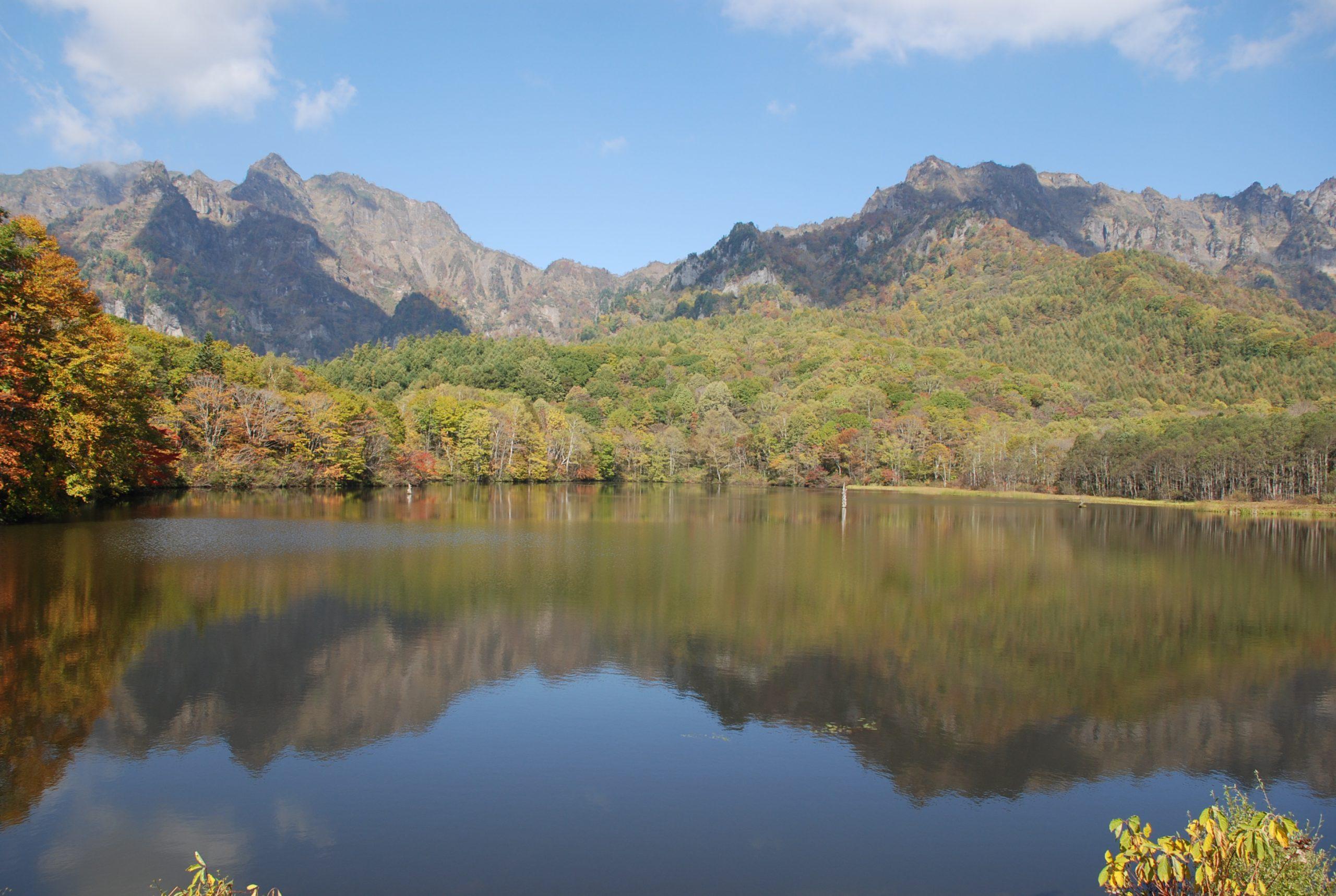 秋 写真1